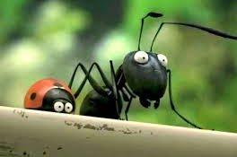 فیلم کوتاه مورچه